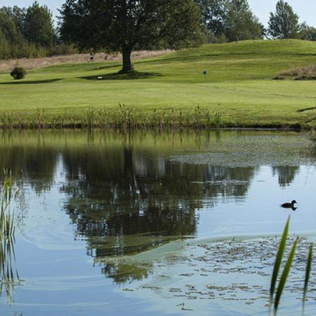 Golfpaket Breviken Golf och Hotell